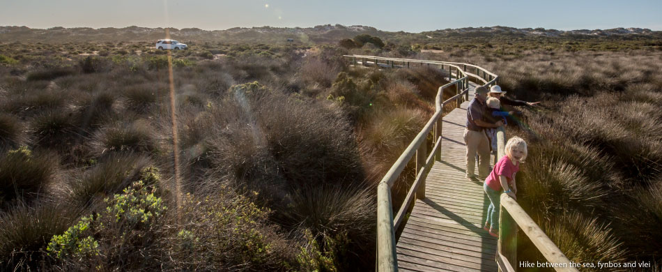 Hike-between-the-sea,-fynbos-and-vlei-2
