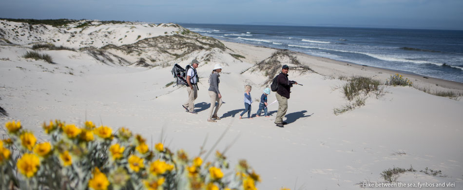 Hike-between-the-sea,-fynbos-and-vlei